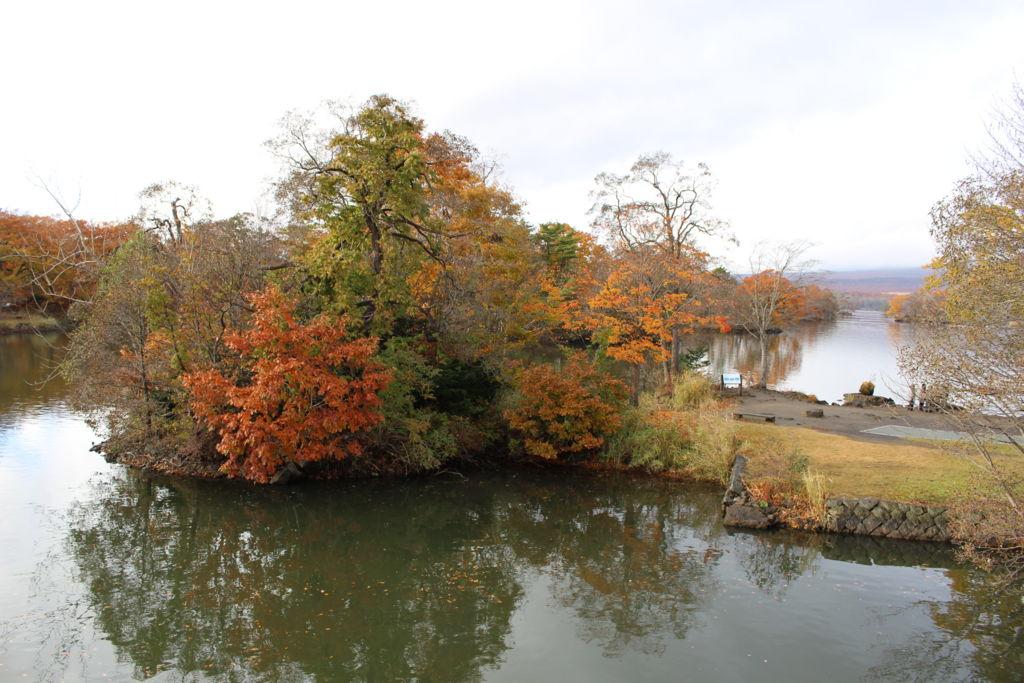 大沼公園の紅葉