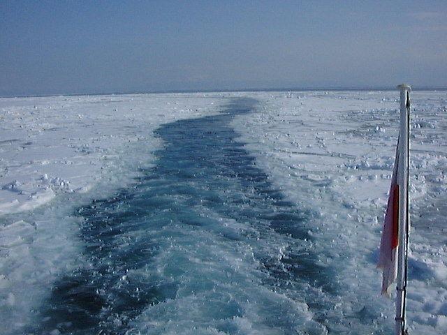 流氷観光砕氷船