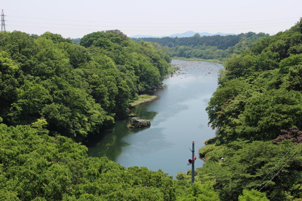 ながめ公園から眺めた渡良瀬川