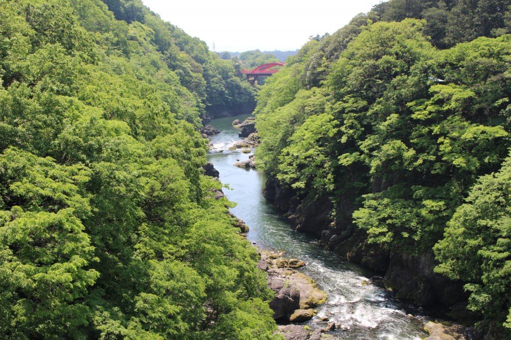 はねたき橋から眺めた高津戸峡