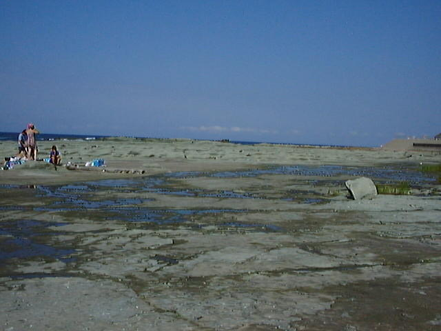 平坦な岩床が続く千畳敷海岸(1999年8月)