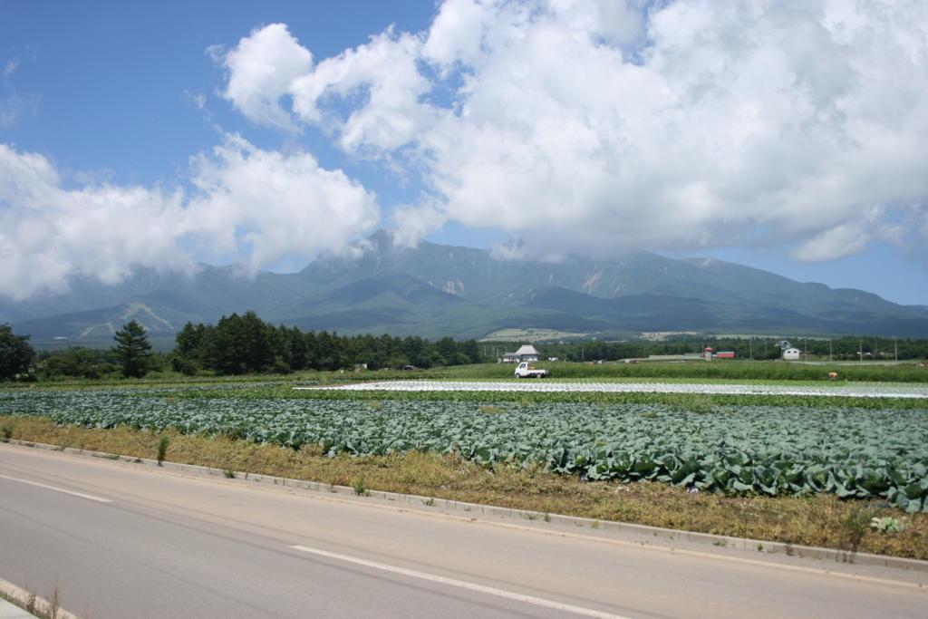 野辺山付近から八ヶ岳を望む(写真は車窓ではなく小海線の線路脇で撮影したもの)