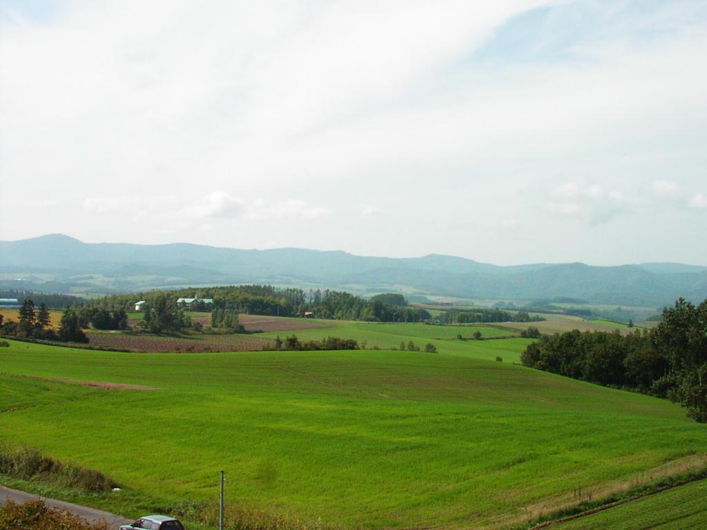 北西の丘展望公園から美瑛の丘を一望!
