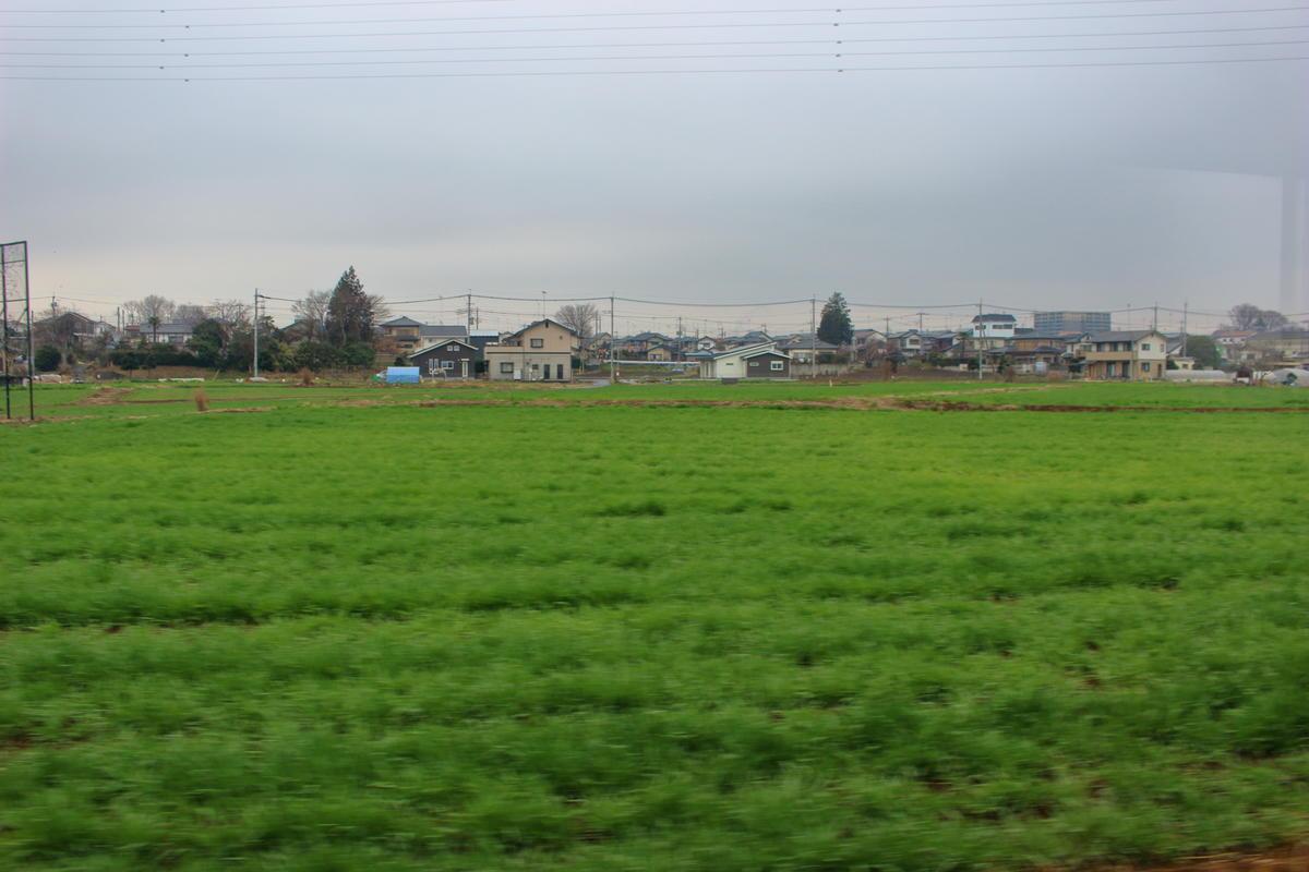 市街地を抜けると車窓には次第に田畑が目立ってきます