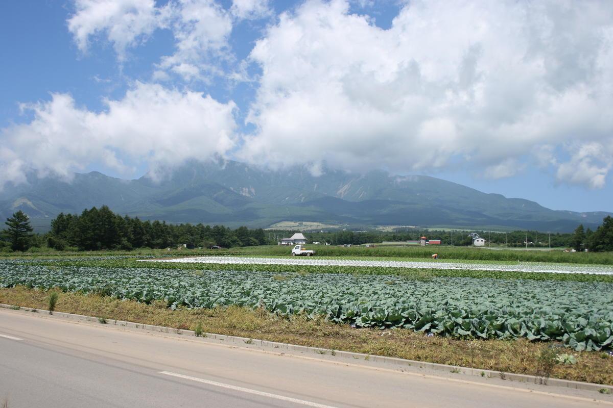 小海線の車窓から眺める夏の八ヶ岳