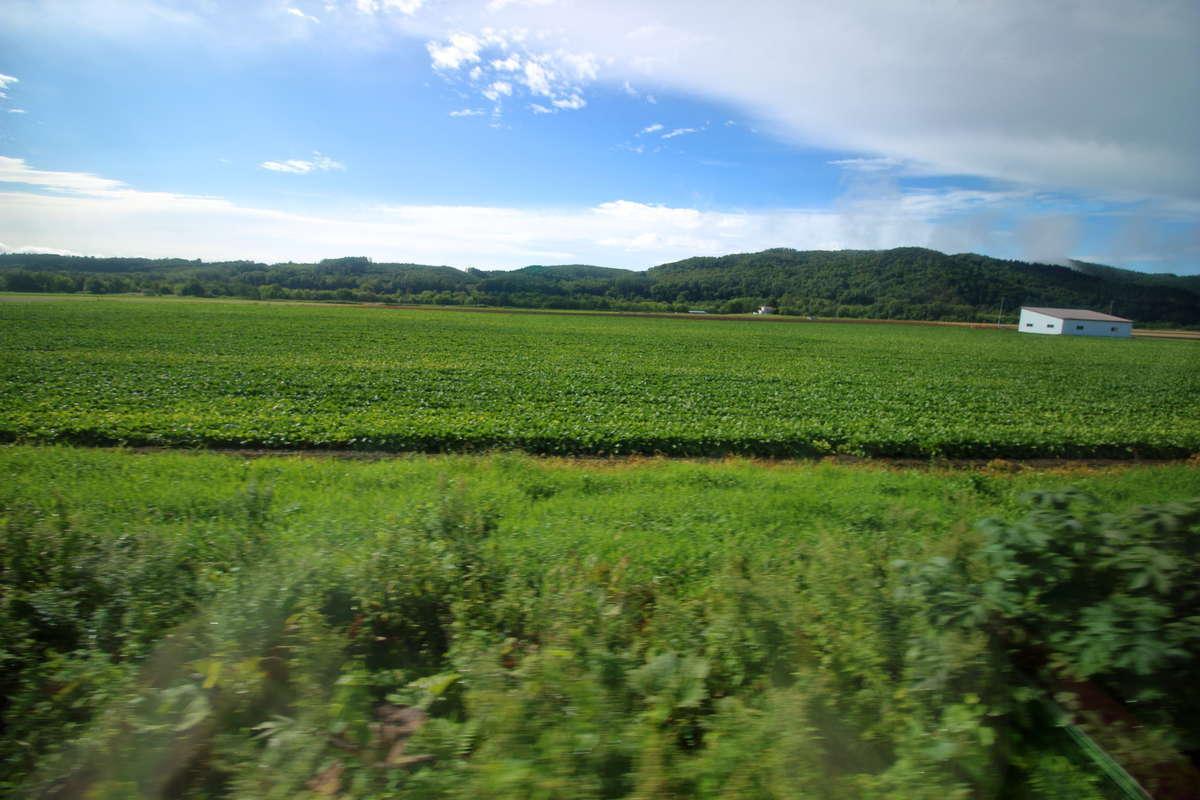 北海道らしい雄大な風景が続く石北本線の車窓