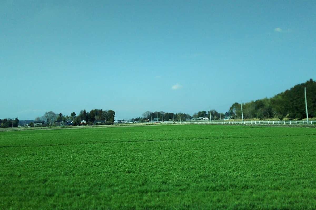 町と町の間には田園風景が広がります
