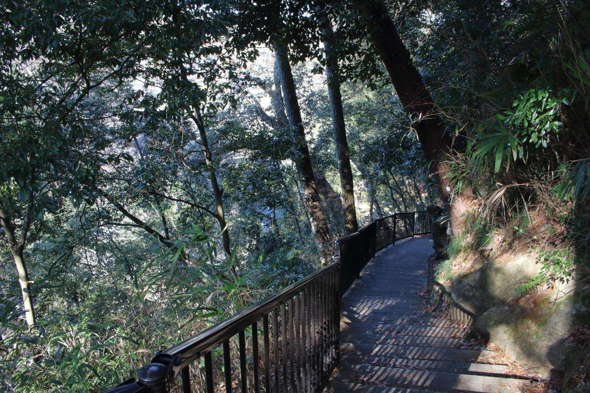 天竜川沿いの気持ちの良い遊歩道を歩く