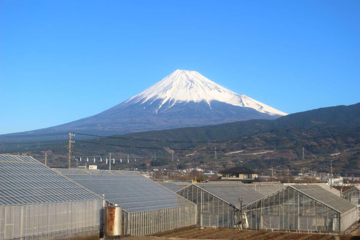 東田子の浦駅近辺の東海道本線の車窓から眺める富士山