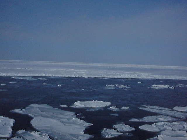流氷観光砕氷船で流氷のある海域へ