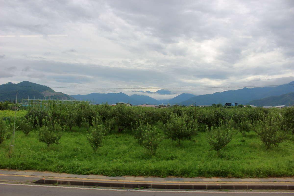 桃やぶどうの果物畑が広がる長野電鉄の車窓