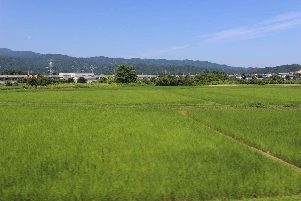 市街地から次第に田園風景へ、新幹線の高架が近づいてくると上越妙高駅