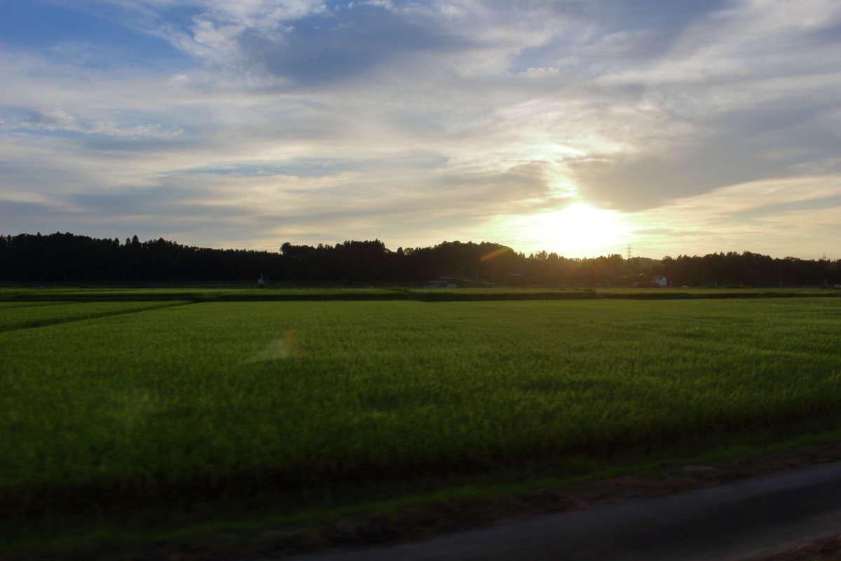 上総牛久駅を出ると夕暮れの田園風景が広がります