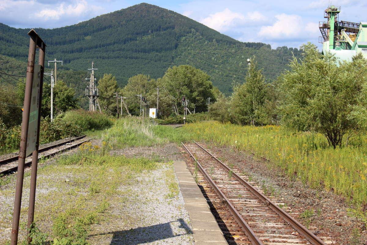 東鹿越駅から新得方面の線路は草に覆われていました…