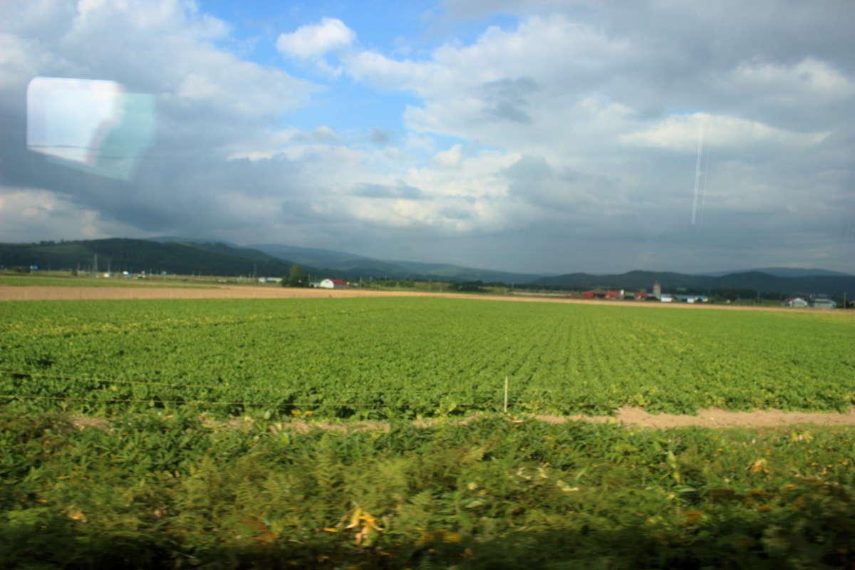 宗谷本線を南下するにつれて牧場よりも畑作が目立ってきました