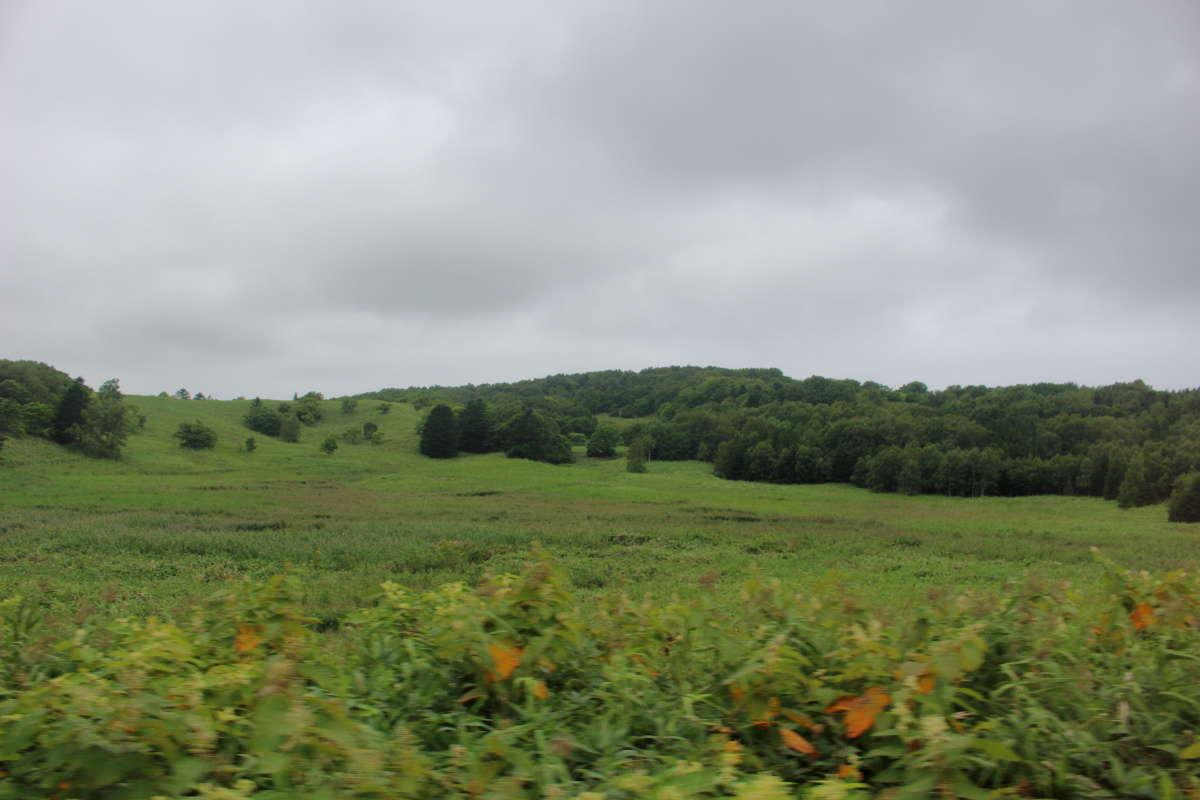 原野が続く宗谷本線北部の車窓