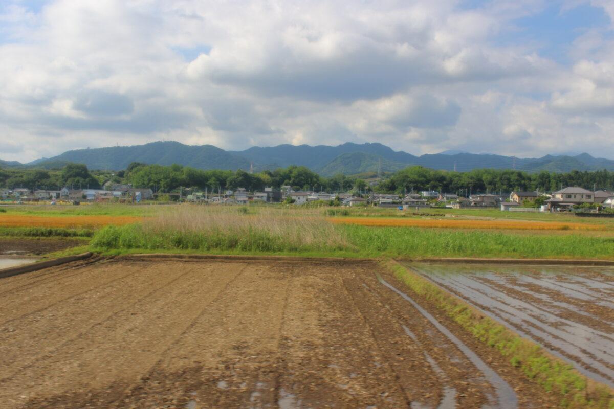 田園風景が続く上信線の車窓