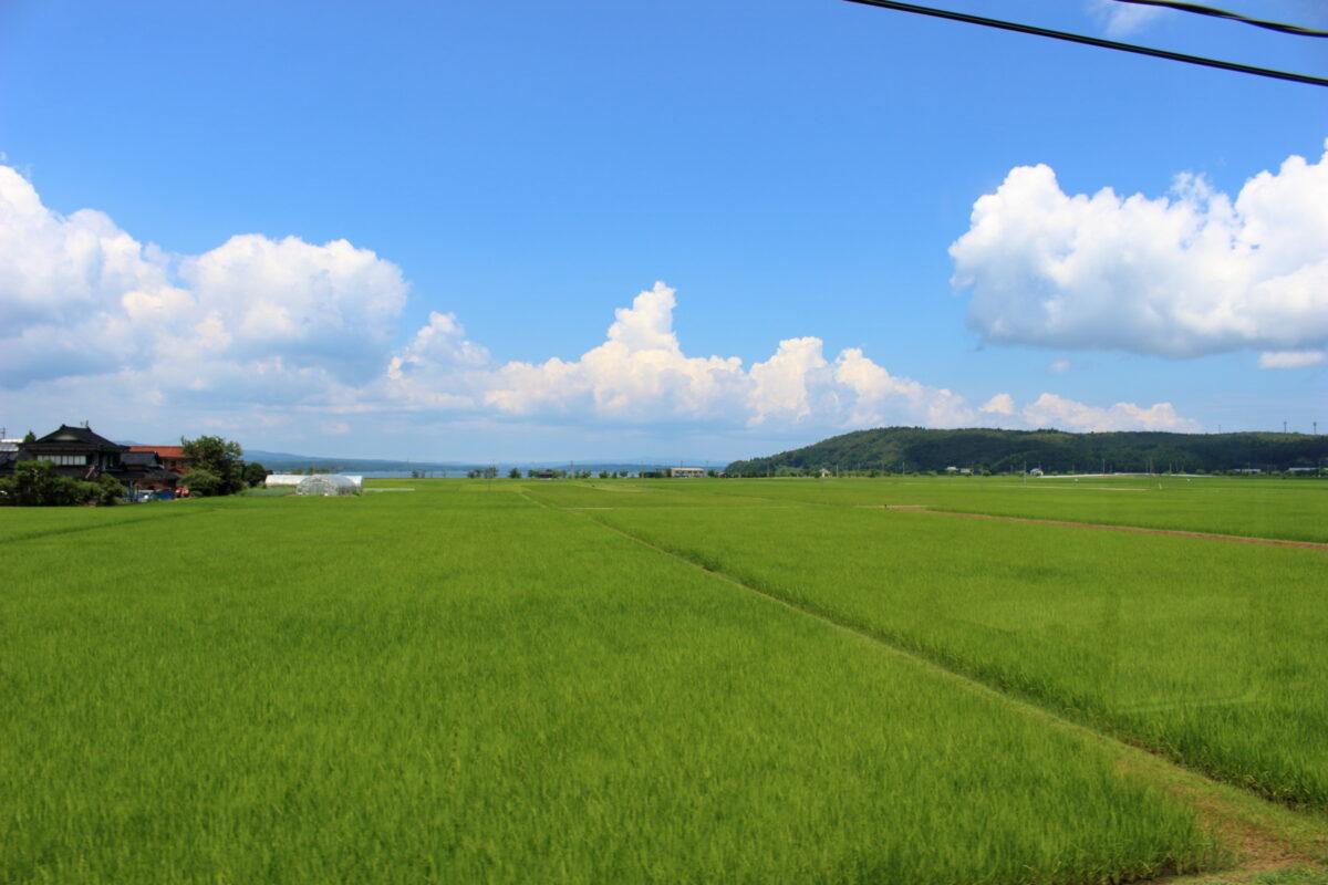 水田の向こうに七尾湾が見えるのと鉄道の車窓